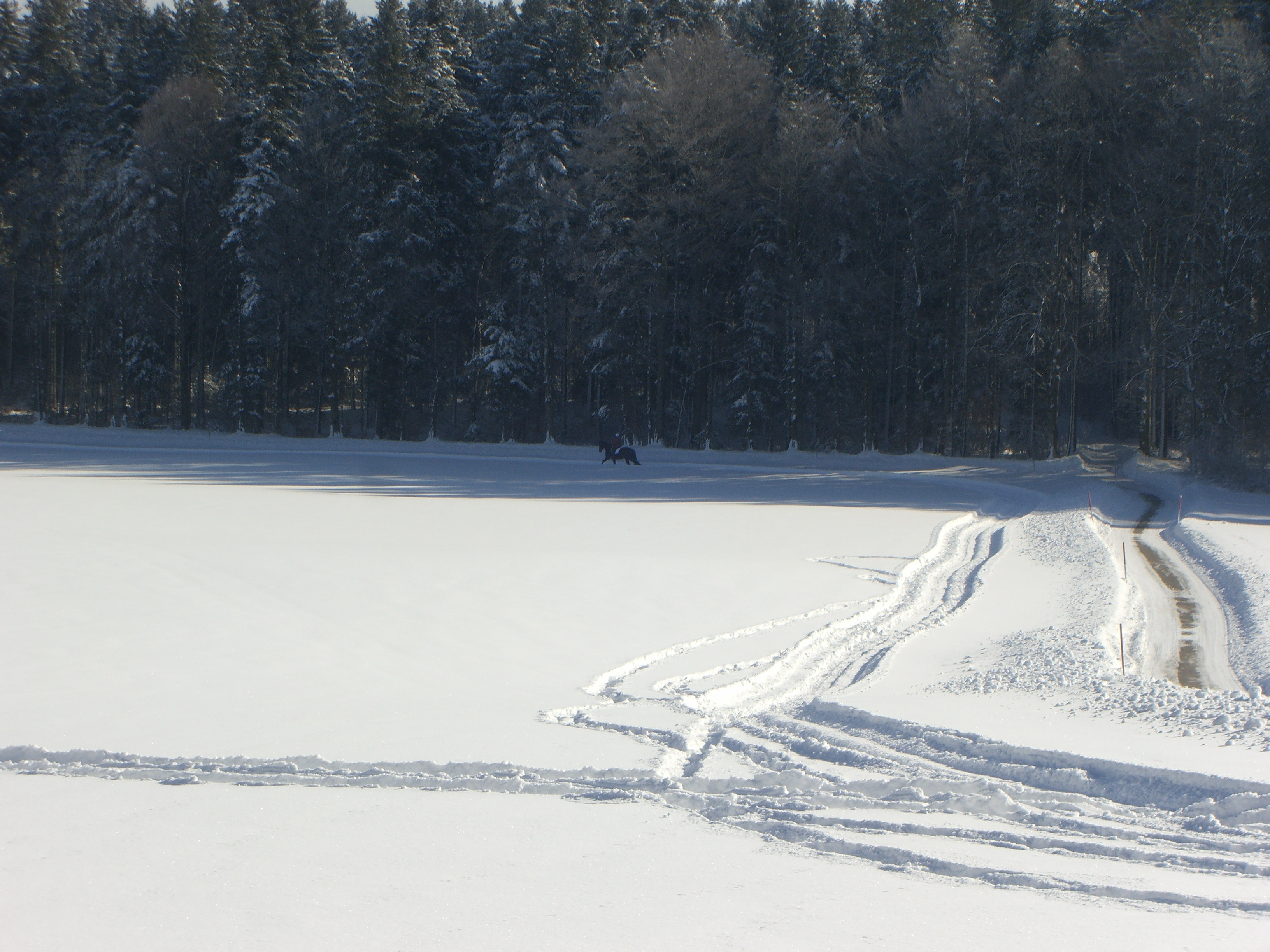 2km Reitweg im Winter